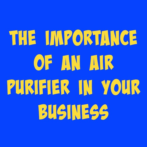 the importance of having an air purifier for your business